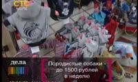 Николай Олюнин подался в рестораторы (от 11 сентября)