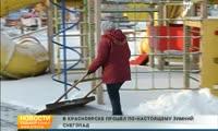 Красноярск укрыло снегом