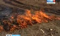 Красноярские огнеборцы, тушившие пожары в Иркутской области и Бурятии, остались без денег