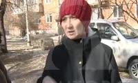 В Красноярске бродячие собаки напали на школьницу