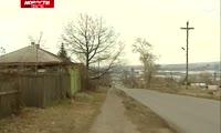Дуб в Николаевке решили сохранить