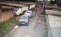 В Ачинске неизвестный стрелял в собак.