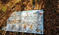При благоустройстве эко-парка рабочие уронили плакат, призывающий охранять березовую рощу