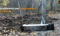 ВКрасноярске на месте леса у СФУ появился эко-парк «Гремячая грива»