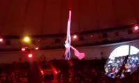 Падение девушки-гимнастки во время выступления в цирке