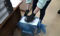 Сотрудники ФСБ и транспортной полиции проводят обыски