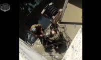 Операция по спасению косули в Ачинске Красноярского края