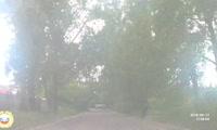Мальчик попал под Nissan в Октябрьском районе Красноярска