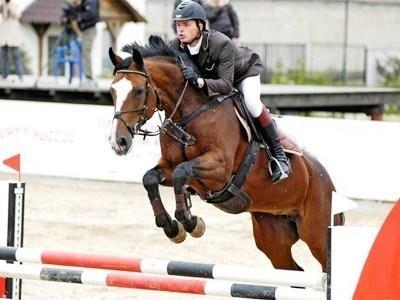 В столице Алтайского края 9 марта пройдут конно-спортивные соревнования