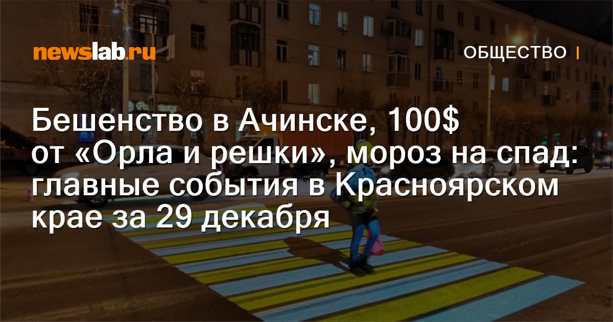 Бешенство вАчинске, 100$ от«Орла ирешки», мороз на спад: главные события вКрасноярском крае за29декабря