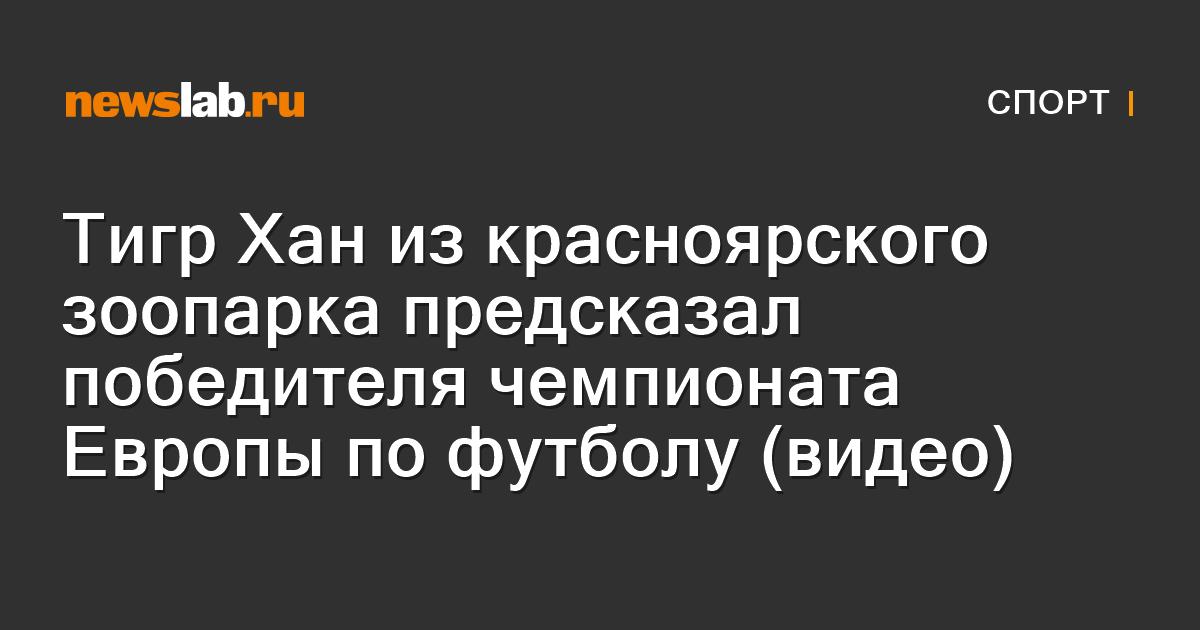 Тигр Хан изкрасноярского зоопарка предсказал победителя чемпионата Европы пофутболу