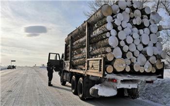 На юге Красноярского края задержали грузовик с лесом без документов: могут забрать груз и машину