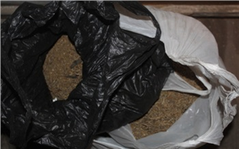 Житель Красноярского края прятал в бане более 4 кг марихуаны