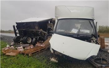 Полиция задержала водителя ГАЗели, выжившего в ДТП с пятью погибшими под Ачинском