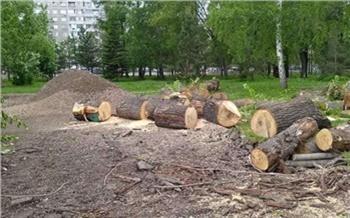 Не нужны такие дорожки: красноярец возмутился вырубке деревьев в Юдинском сквере ради благоустройства