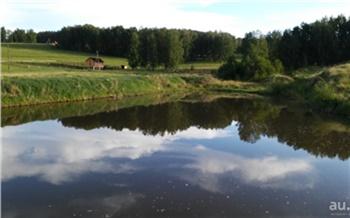 Прокуратура оспаривает сделку по продаже земли с озером в Емельяновском районе