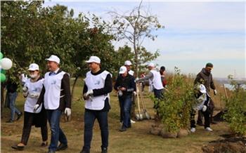 Красноярской набережной на проспекте Ульяновском дали название и высадили там 500 деревьев