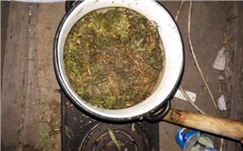 Почти килограмм марихуаны изъяли у жителя Емельяновского района. Мужчина хранил ее для себя