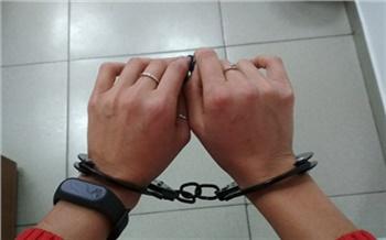 Красноярские следователи рассказали подробности уголовного дела в отношении суррогатной матери проданного в Китай ребенка