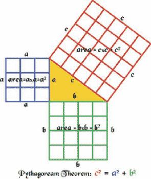 Essay using tree graph