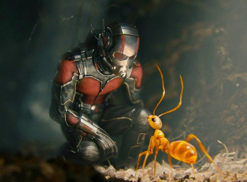 http://newslab.ru/images/2015/july/17/kinopoisk.ru-Ant-Man-2611868.jpg