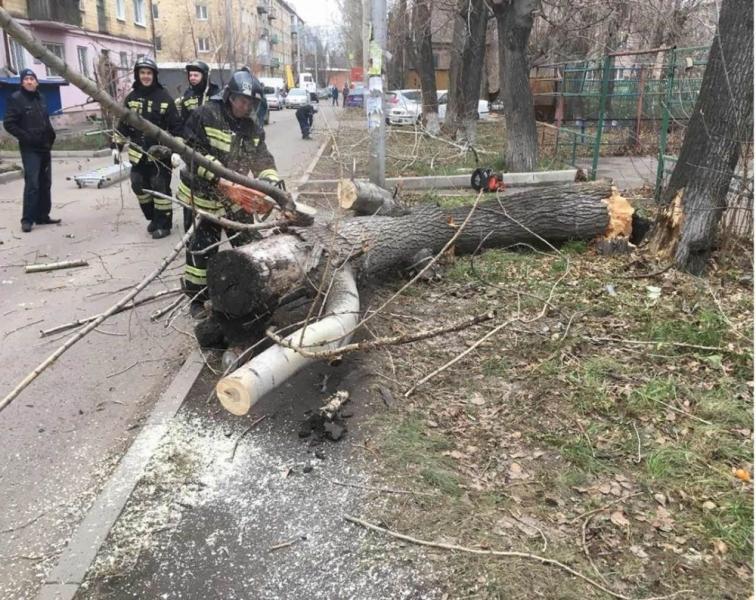 Последствия штормового ветра устраняют вКрасноярске