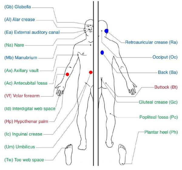 пищевая аллергия на руках у грудничков