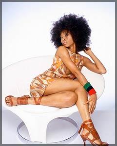 Erykah Badu с сайта http://blogs.sfweekly.com/shookdown/badu-erykah.jpg